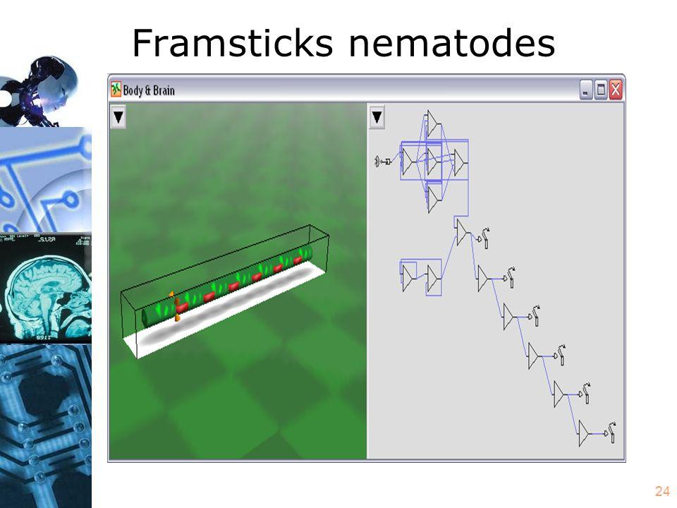 24 Framsticks nematodes