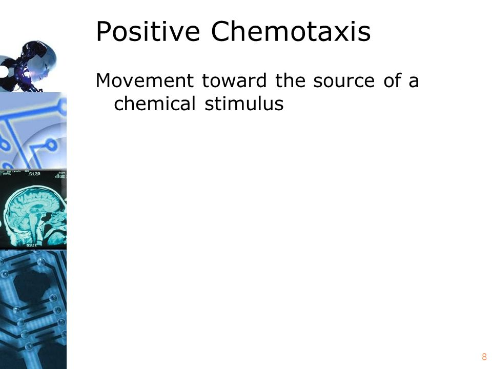 8 Positive Chemotaxis Movement toward the source of a chemical stimulus