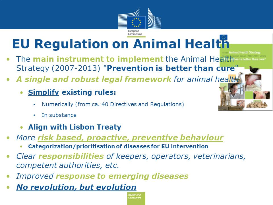 Health and Consumers Health and Consumers To learn more about the Animal Health proposal: http://ec.europa.eu/food/animal/animal-health- proposal-2013_en.htm Thank you for your attention