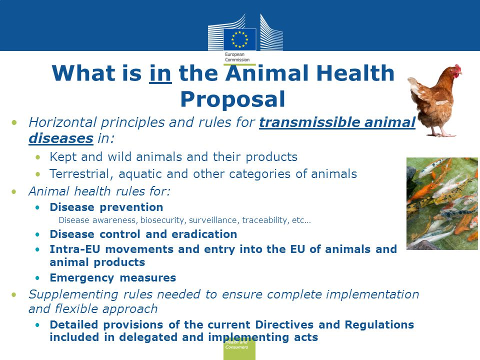 Health and Consumers Health and Consumers What is in the Animal Health Proposal Horizontal principles and rules for transmissible animal diseases in: Kept and wild animals and their products Terrestrial, aquatic and other categories of animals Animal health rules for: Disease prevention Disease awareness, biosecurity, surveillance, traceability, etc… Disease control and eradication Intra-EU movements and entry into the EU of animals and animal products Emergency measures Supplementing rules needed to ensure complete implementation and flexible approach Detailed provisions of the current Directives and Regulations included in delegated and implementing acts