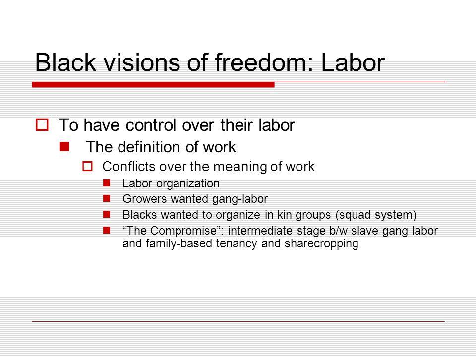 The Rise of the New Negro  Enter the New Negro by Alain Locke http://etext.virginia.edu/harlem/LocEnteT.html