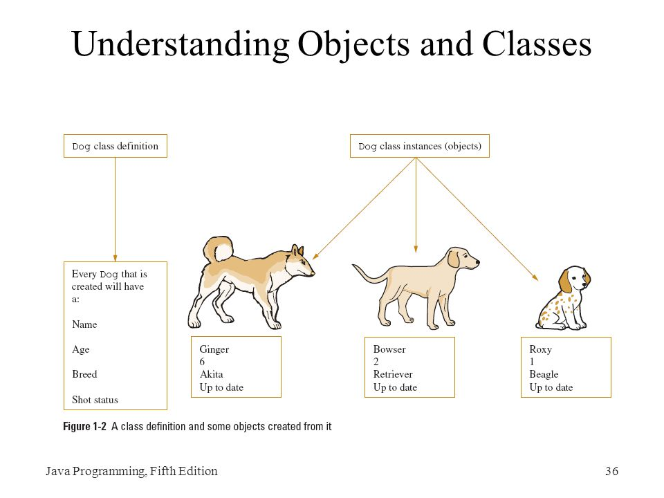 Understanding Objects and Classes Java Programming, Fifth Edition36