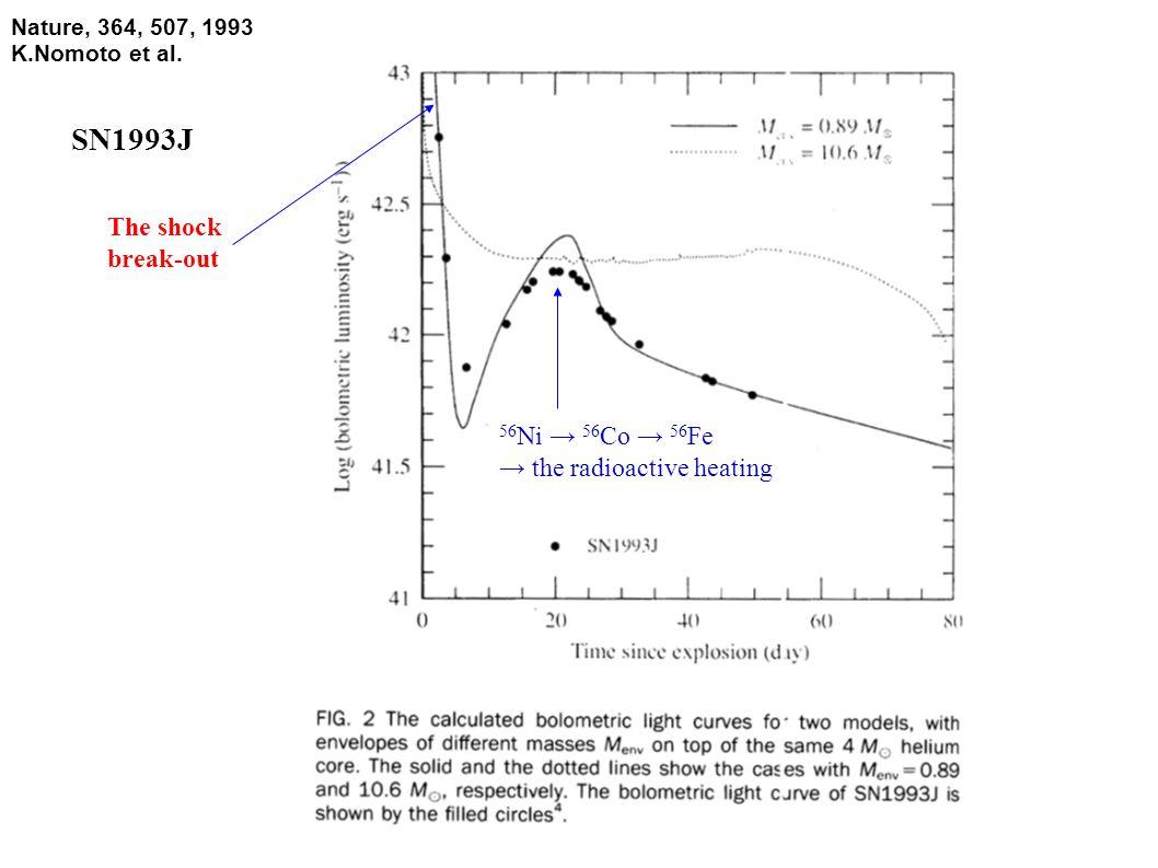Nature, 364, 507, 1993 K.Nomoto et al. The shock break-out 56 Ni → 56 Co → 56 Fe → the radioactive heating SN1993J