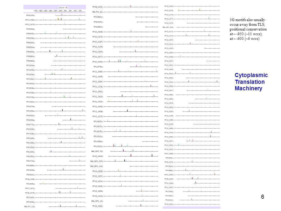37 Organellar Translation Machinery