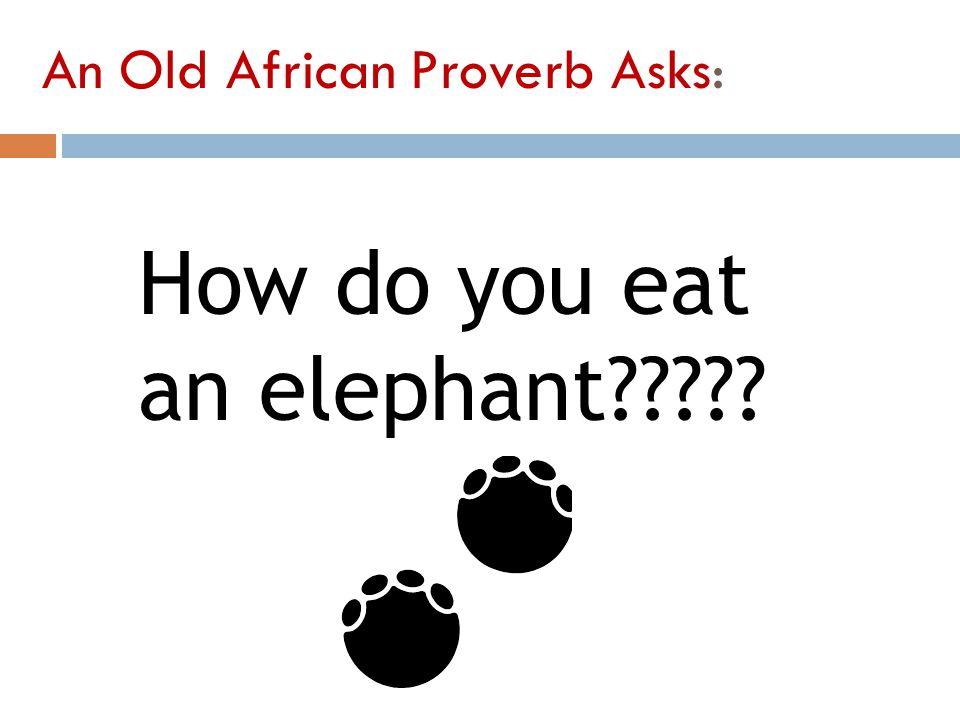 An Old African Proverb Asks: How do you eat an elephant