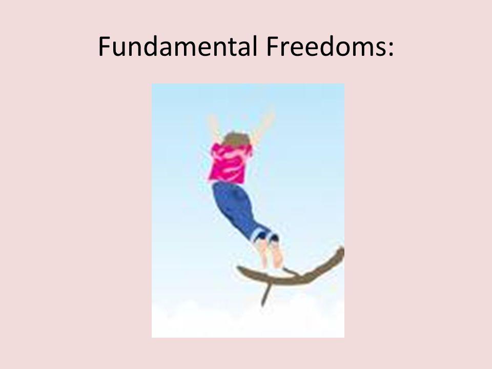 Fundamental Freedoms: