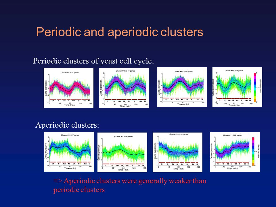 Periodic and aperiodic clusters Periodic clusters of yeast cell cycle: Aperiodic clusters: => Aperiodic clusters were generally weaker than periodic clusters