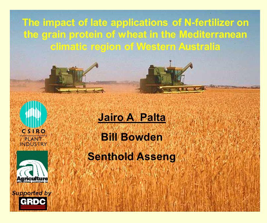 Post-tillering N applications and grain protein content Seeding N (kg/ha ) Post-tillering 15 N-fertilizer SE(DC25 ) B (DC42 ) A (DC61) 0 30kg/ha 50 30kg/ha