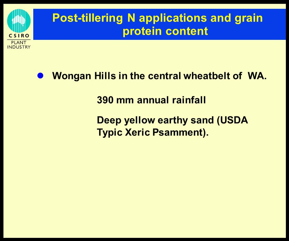 Post-tillering N applications and grain protein content Wongan Hills in the central wheatbelt of WA.