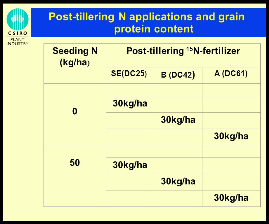 Post-tillering N applications and grain protein content Seeding N (kg/ha ) Post-tillering 15 N-fertilizer SE(DC25 ) B (DC42 ) A (DC61) 0 30kg/ha 50 30kg/ha