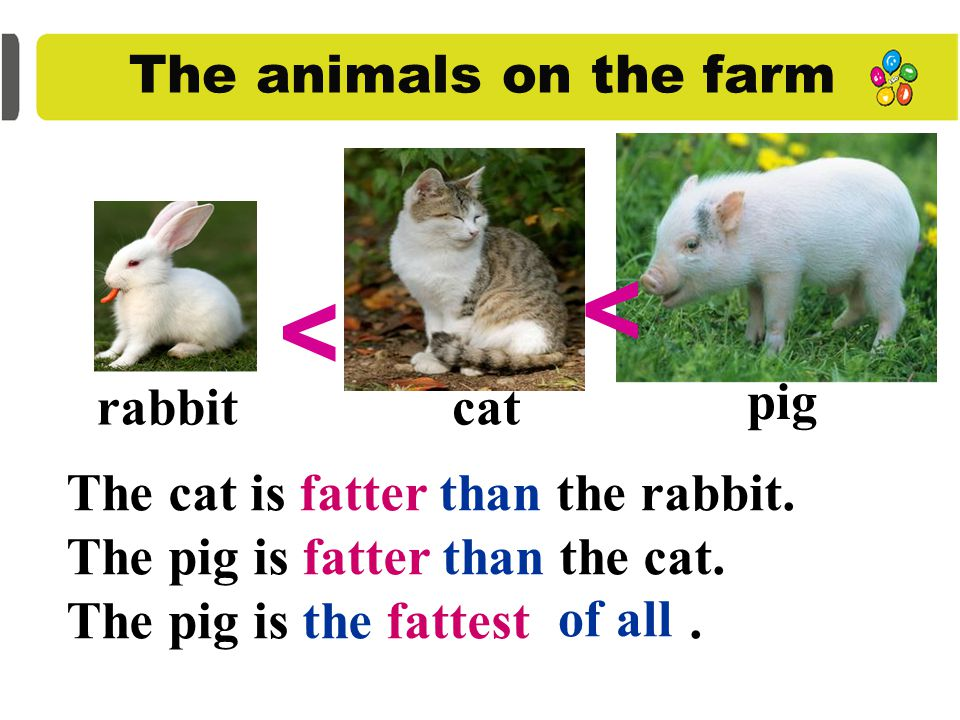 The animals on the farm cow horse duck pig rabbit goose hen mouse sheep