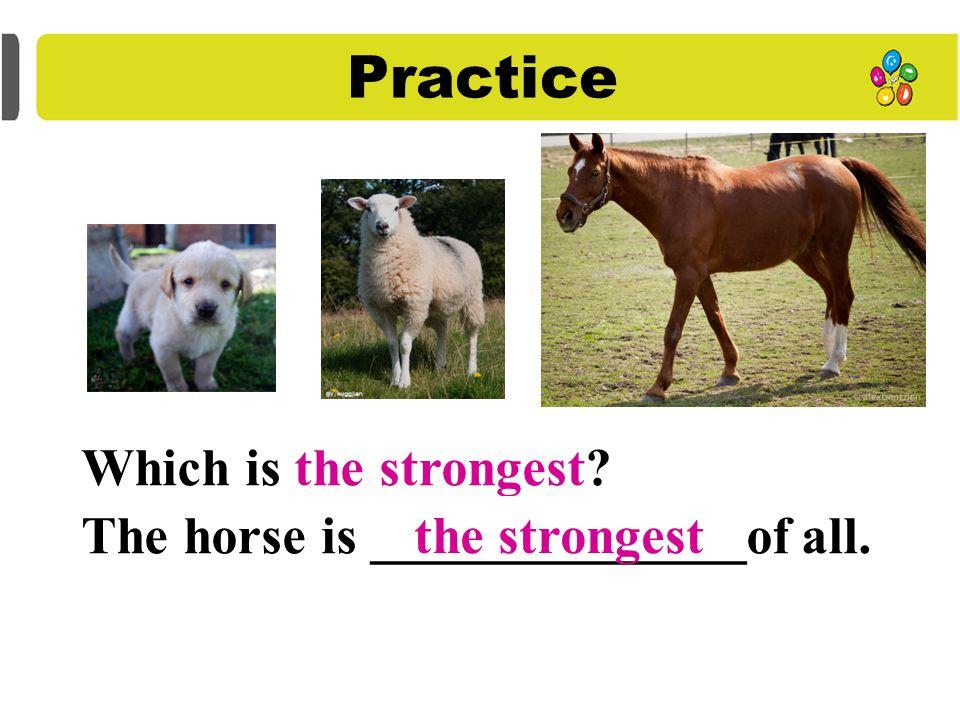 Summary 1. 形容词比较级句型 A + be 动词 + 比较级 than B 2. 形容词最高级句型 A+ be 动词 +the+ 最高级 + 范围 ( of all )