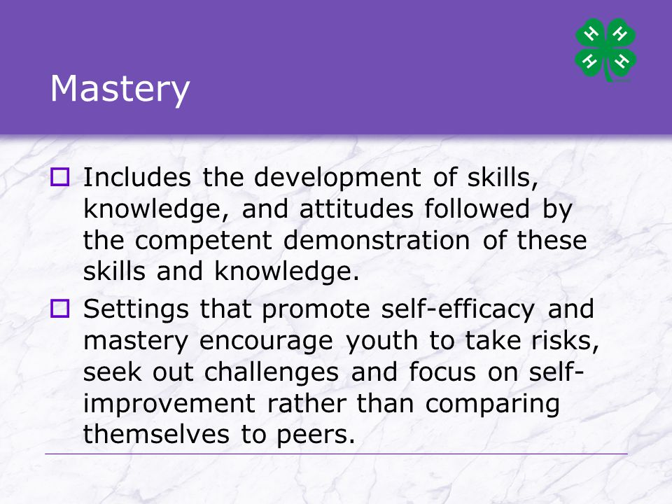 Examples of life skills developed through 4-H  Decision making  Wise use of resources  Communication  Accepting differences  Leadership  Developing useful/marketable skills  Making healthy lifestyle choices  Self responsibility