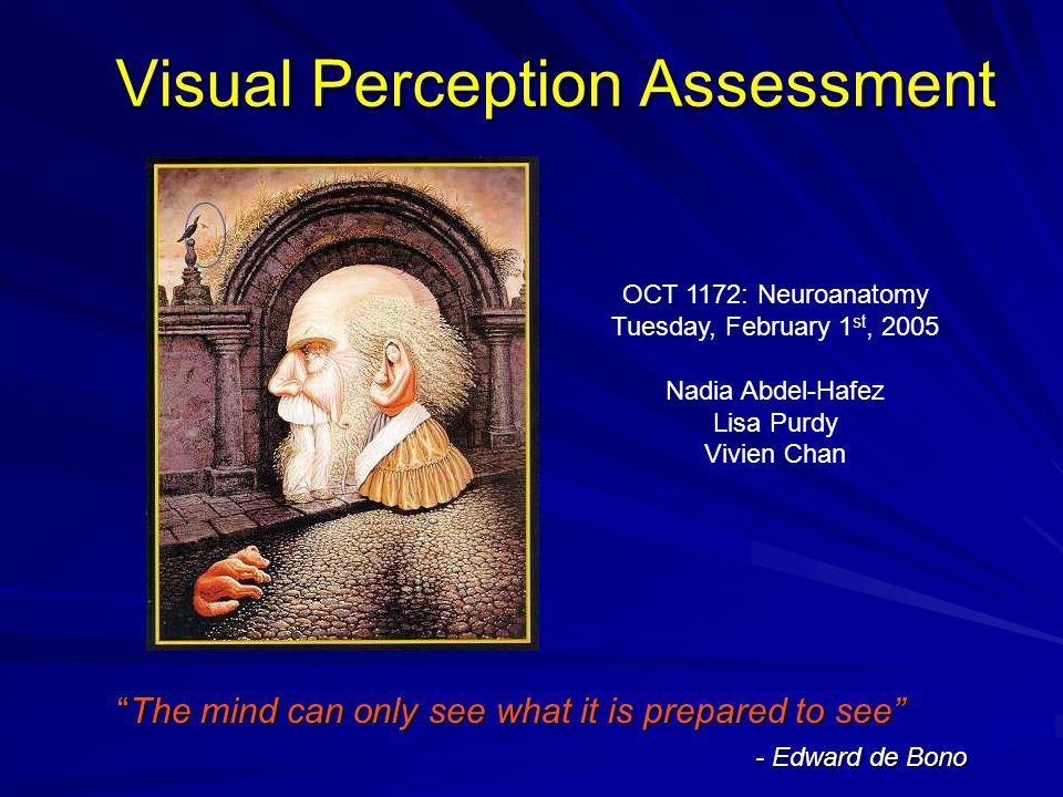 Visual Perception Assessment The mind can only see what it is prepared to see - Edward de Bono OCT 1172: Neuroanatomy Tuesday, February 1 st, 2005 Nadia Abdel-Hafez Lisa Purdy Vivien Chan
