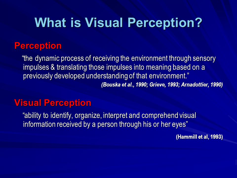 What is Visual Perception.