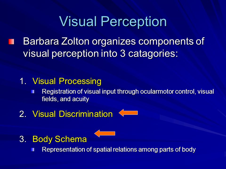 Visual Perception Barbara Zolton organizes components of visual perception into 3 catagories: 1.Visual Processing Registration of visual input through ocularmotor control, visual fields, and acuity 2.Visual Discrimination 3.Body Schema Representation of spatial relations among parts of body