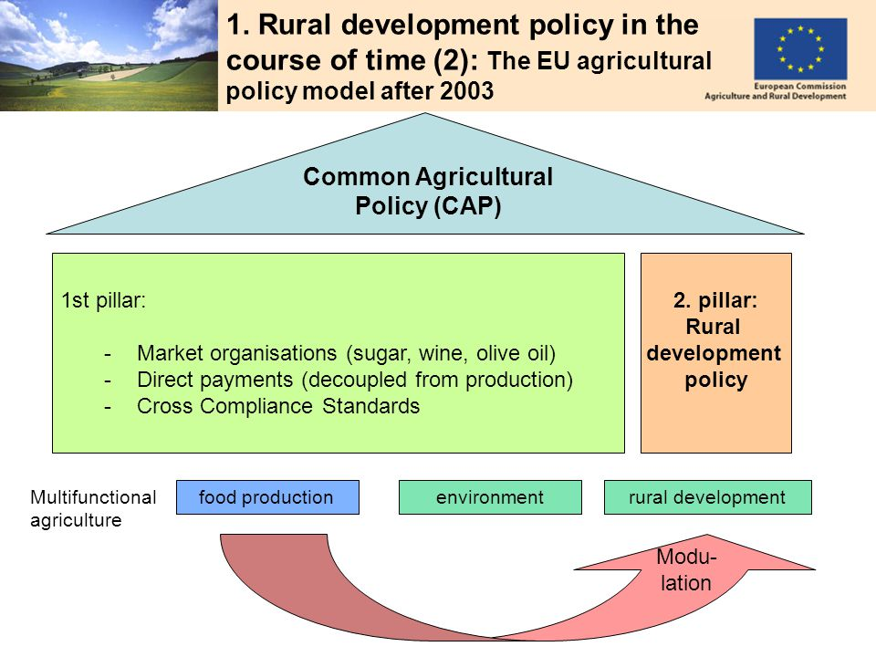 CONSTANTINOU 4 1. Rural development policy in the course of time (2): The EU agricultural policy model after 2003 Common Agricultural Policy (CAP) foo