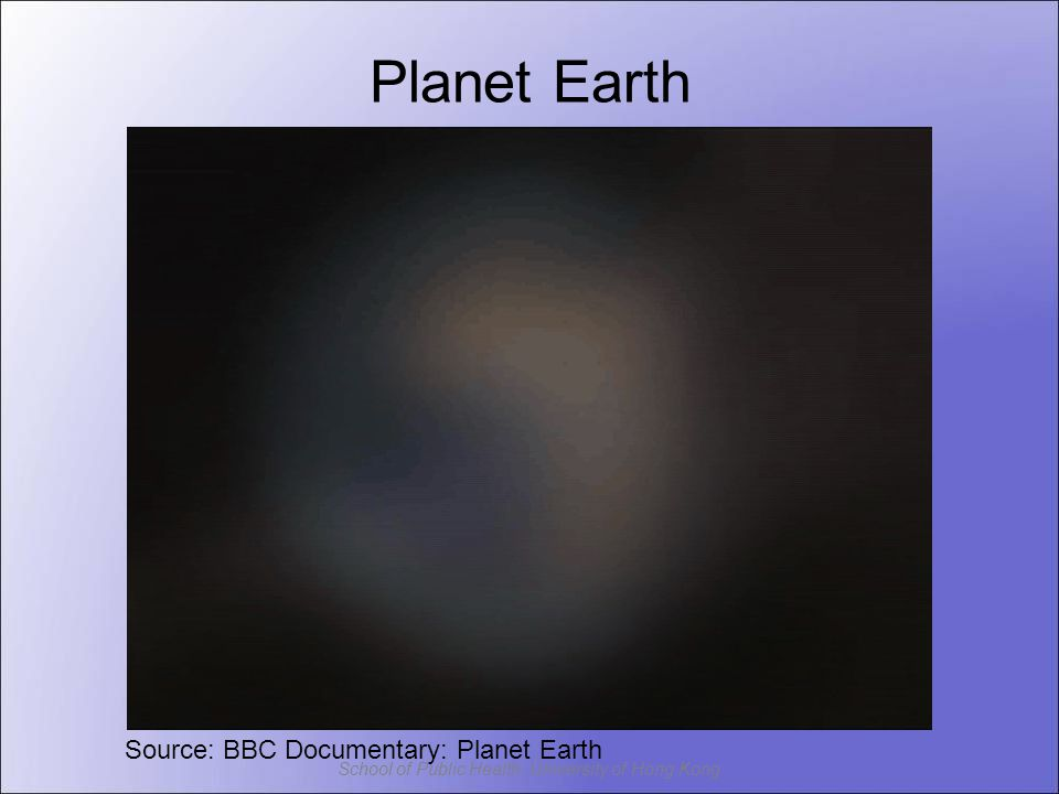 Planet Earth Source: BBC Documentary: Planet Earth
