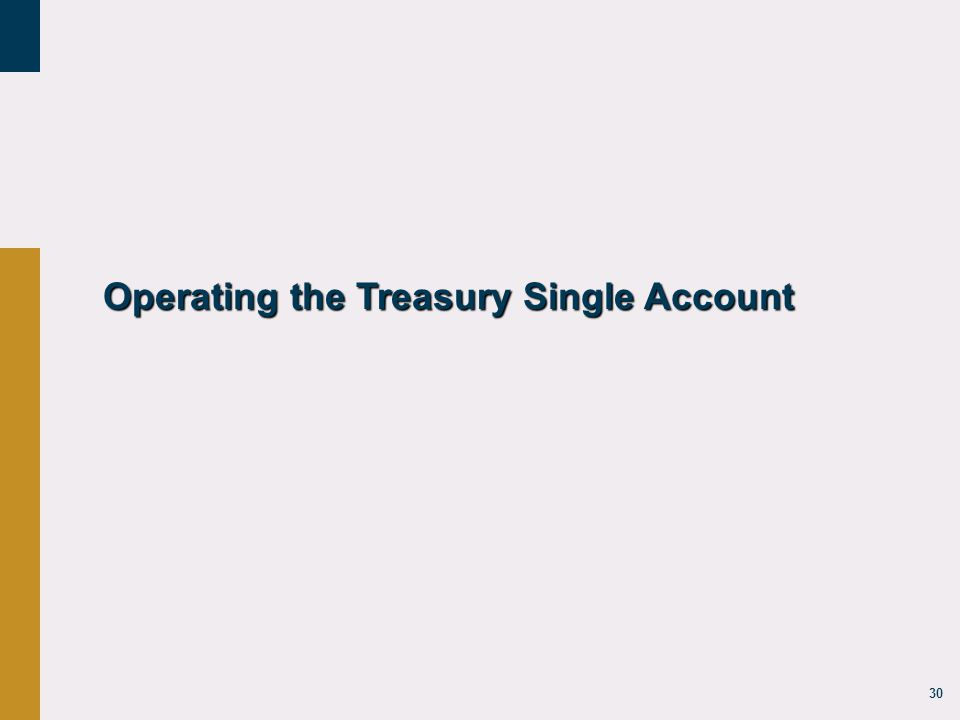 30 Operating the Treasury Single Account