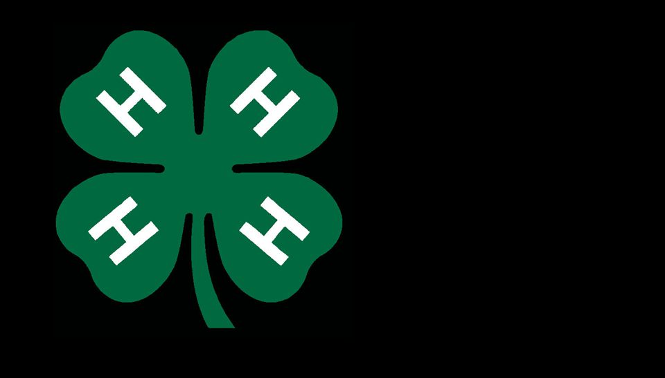 4-H H ANDS - Larger Service CHRISTIANITY IS A RELIGION OF SERVICE Pure and undefiled religion before God and the Father is this: to visit orphans and widows in their trouble, and to keep oneself unspotted from the world.