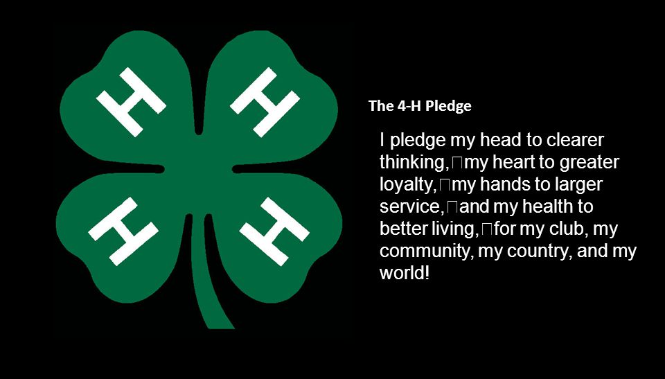 I pledge my head to clearer thinking, my heart to greater loyalty, my hands to larger service, and my health to better living, for my club, my community, my country, and my world.
