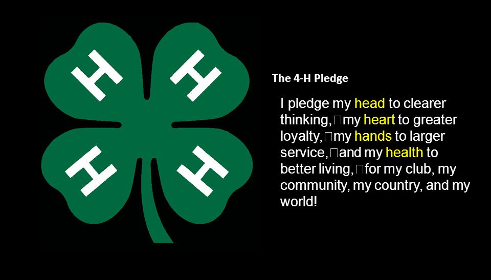 H EAD H EART H ANDS H EALTH The Christian 4-H Clearer Thinking Greater Loyalty Larger Service Better Living