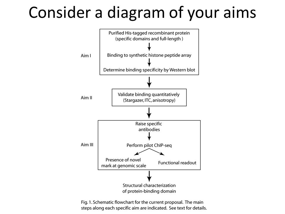 Consider a diagram of your aims