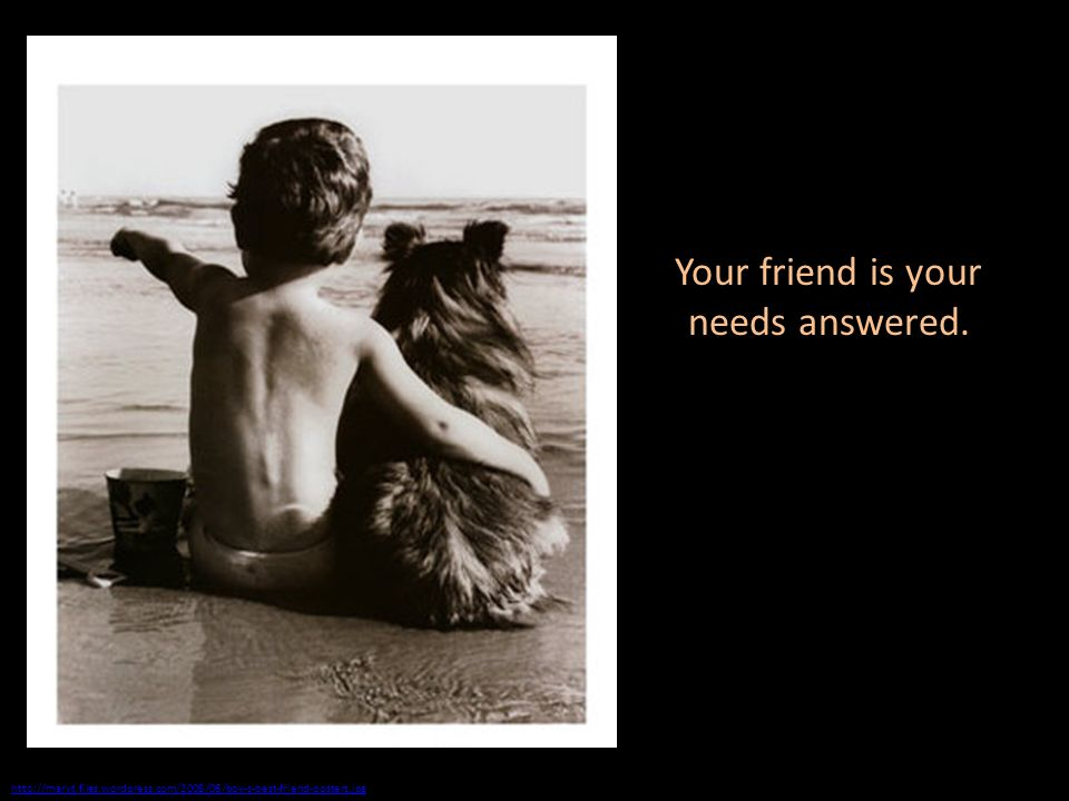 http://maryt.files.wordpress.com/2008/06/boy-s-best-friend-posters.jpg Your friend is your needs answered.