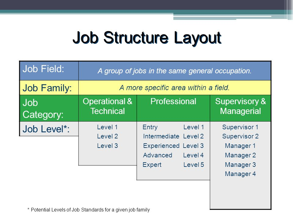 Job Structure Layout * Potential Levels of Job Standards for a given job family Job Field: A group of jobs in the same general occupation.