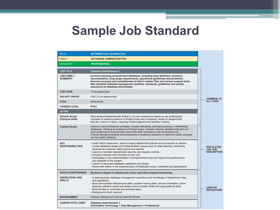 Sample Job Standard