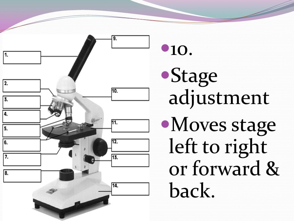 10. Stage adjustment Moves stage left to right or forward & back.