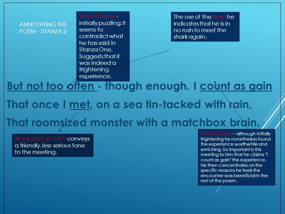 ANNOTATING THE POEM – STANZA 2 But not too often - though enough. I count as gain That once I met, on a sea tin-tacked with rain, That roomsized monst
