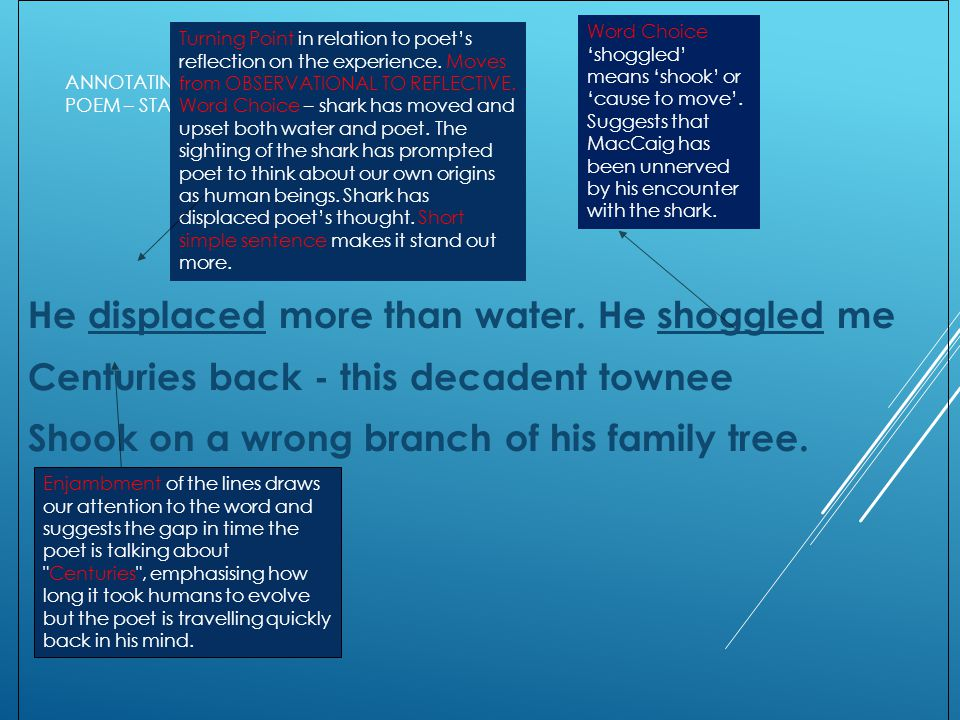 ANNOTATING THE POEM – STANZA 3 He displaced more than water.