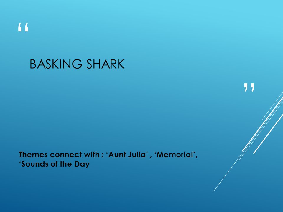 """"""" """" BASKING SHARK Themes connect with : 'Aunt Julia', 'Memorial', 'Sounds of the Day"""