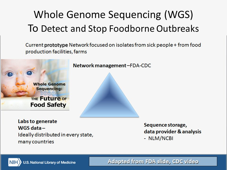 Whole Genome Sequencing (WGS) To Detect and Stop Foodborne Outbreaks
