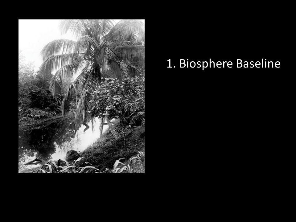 1. Biosphere Baseline