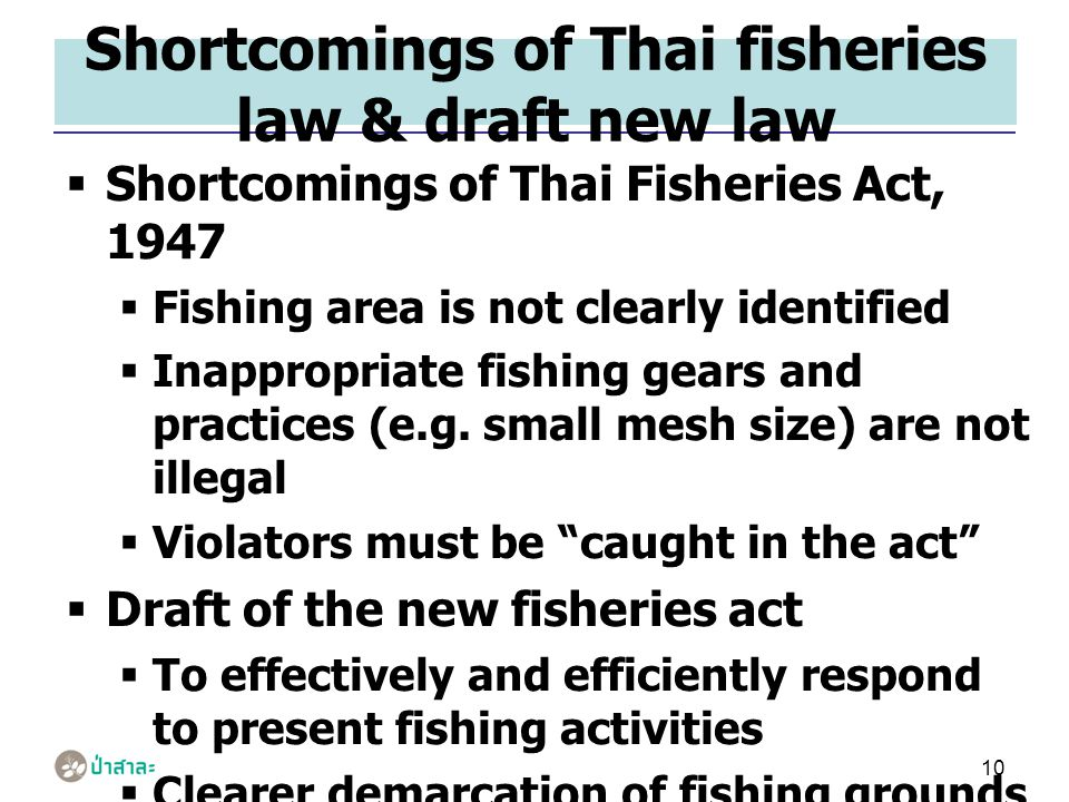 10 Shortcomings of Thai fisheries law & draft new law  Shortcomings of Thai Fisheries Act, 1947  Fishing area is not clearly identified  Inappropriate fishing gears and practices (e.g.