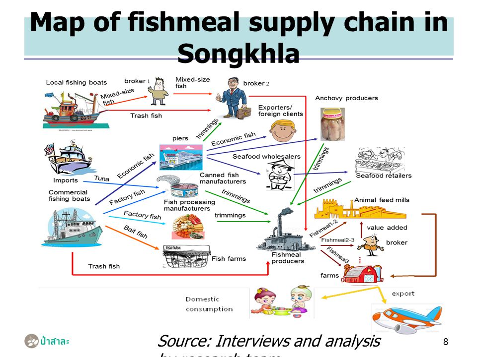 8 Map of fishmeal supply chain in Songkhla Source: Interviews and analysis by research team