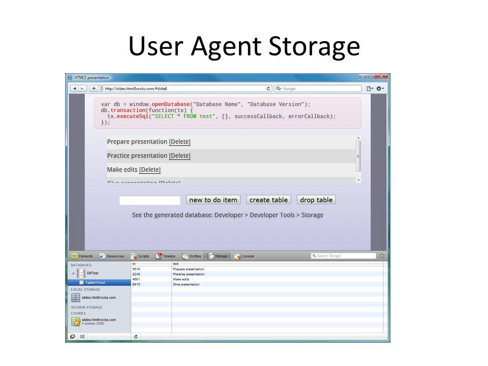 User Agent Storage