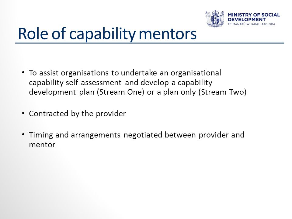 Role of capability mentors To assist organisations to undertake an organisational capability self-assessment and develop a capability development plan (Stream One) or a plan only (Stream Two) Contracted by the provider Timing and arrangements negotiated between provider and mentor