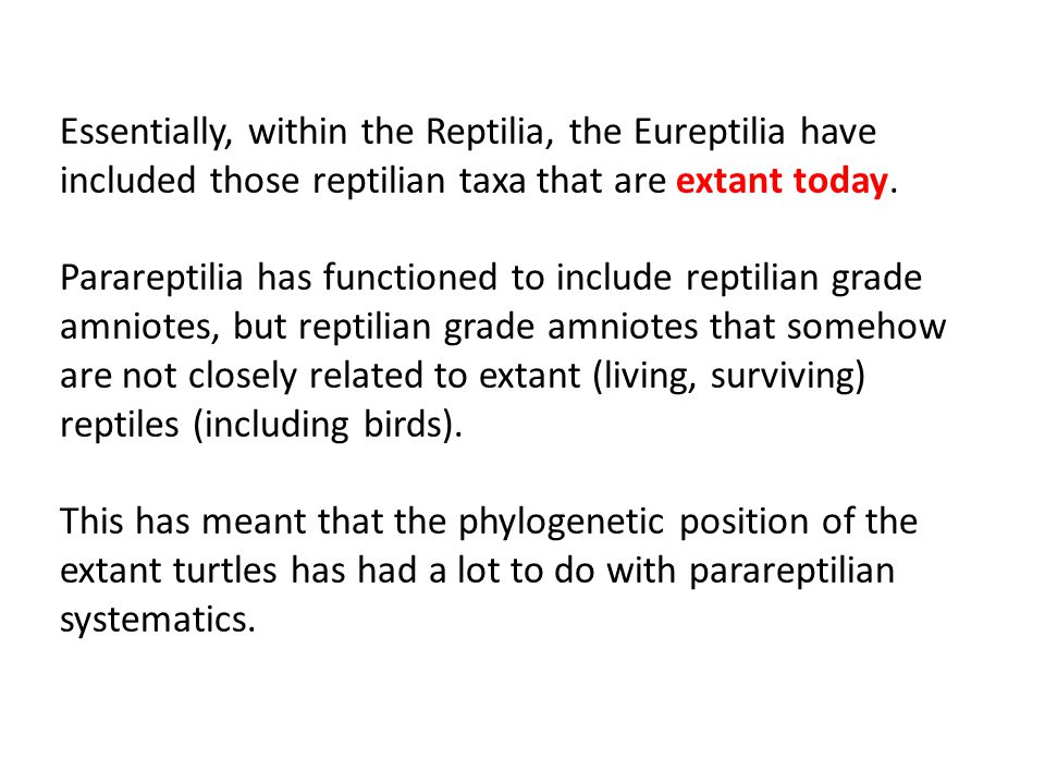 Essentially, within the Reptilia, the Eureptilia have included those reptilian taxa that are extant today.