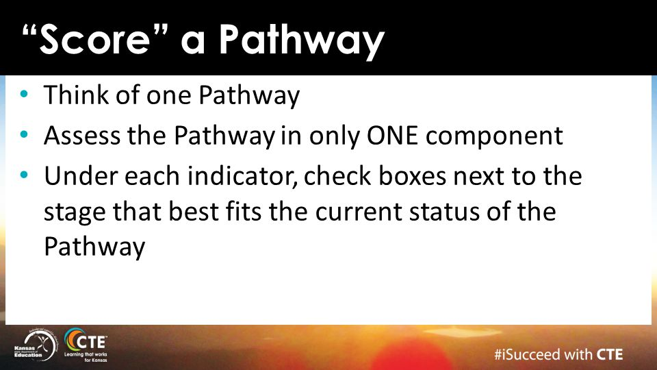 Think of one Pathway Assess the Pathway in only ONE component Under each indicator, check boxes next to the stage that best fits the current status of