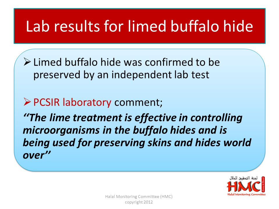 Lab results for limed buffalo hide  Limed buffalo hide was confirmed to be preserved by an independent lab test  PCSIR laboratory comment; ''The lime treatment is effective in controlling microorganisms in the buffalo hides and is being used for preserving skins and hides world over''  Limed buffalo hide was confirmed to be preserved by an independent lab test  PCSIR laboratory comment; ''The lime treatment is effective in controlling microorganisms in the buffalo hides and is being used for preserving skins and hides world over'' Halal Monitoring Committee (HMC) copyright 2012