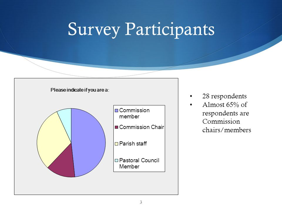 Survey Participants 28 respondents Almost 65% of respondents are Commission chairs/members 3