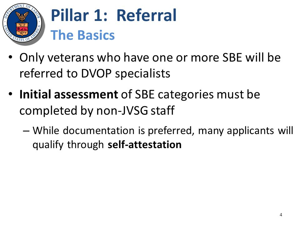 Pillar 1: Referral The Basics Only veterans who have one or more SBE will be referred to DVOP specialists Initial assessment of SBE categories must be