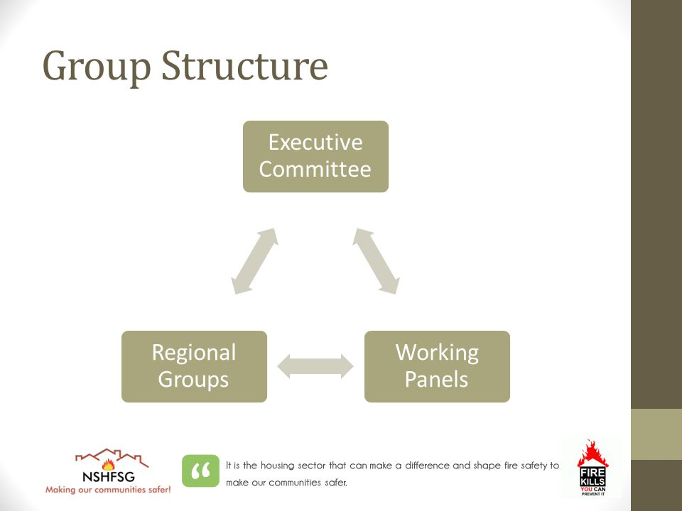 Group Structure Executive Committee Working Panels Regional Groups