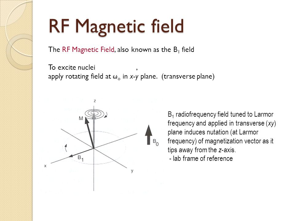 RF Magnetic field The RF Magnetic Field, also known as the B 1 field To excite nuclei, apply rotating field at  o in x-y plane. (transverse plane) B