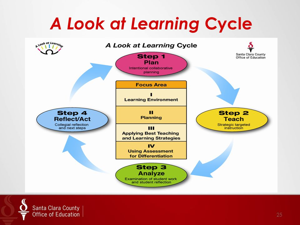 A Look at Learning Cycle 25