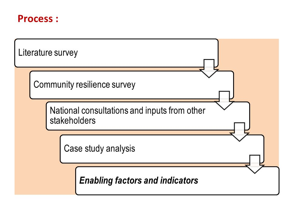 Process : Literature surveyCommunity resilience survey National consultations and inputs from other stakeholders Case study analysis Enabling factors and indicators
