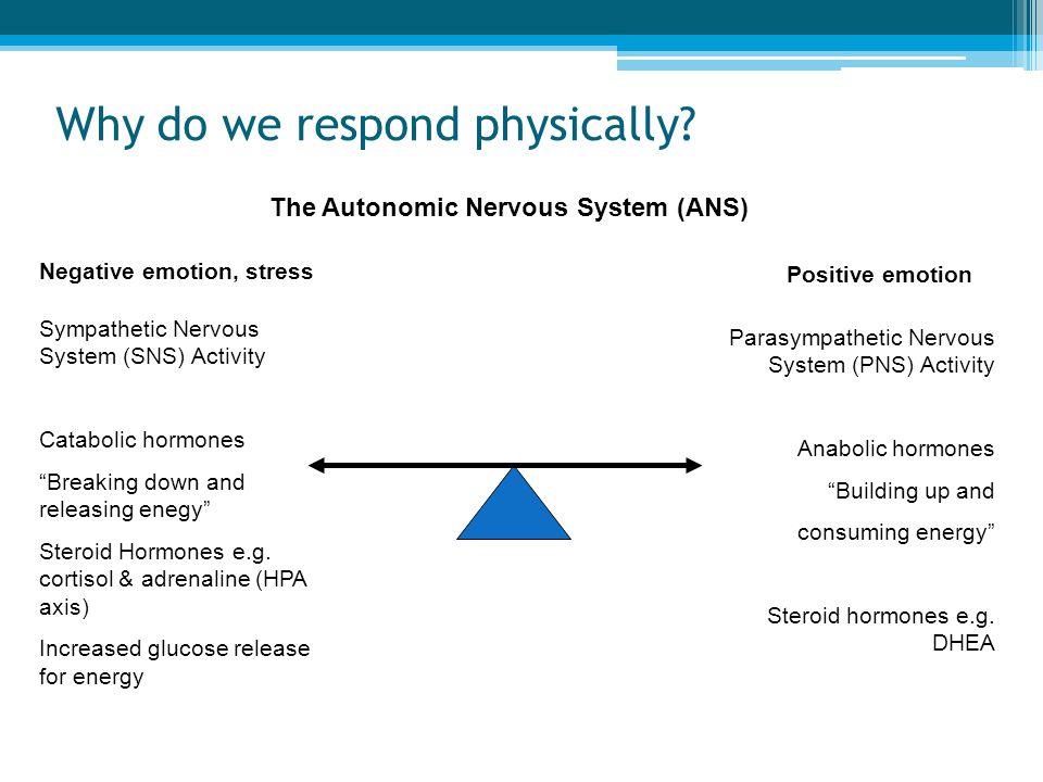 Why do we respond physically? Negative emotion, stress Positive emotion The Autonomic Nervous System (ANS) Sympathetic Nervous System (SNS) Activity C